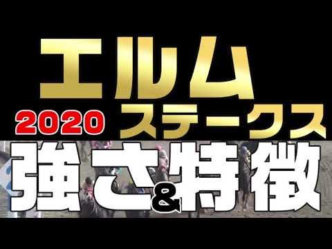 【エルムステークス2020】有力馬考察。札幌で行われるダート重賞。強さと特徴。前走レースにヒントあり、予想材料として特徴を整理解説(競馬初心者にも楽しんでもらえるよう分かりやすい解説を心がけました)