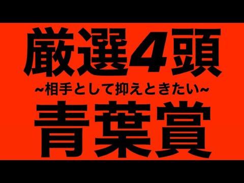 2020年 青葉賞 ~相手として抑えときたい~ 厳選4頭!! #177 ★競馬予想★