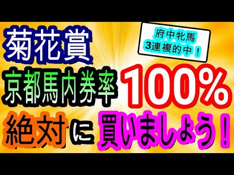 【競馬予想】菊花賞2020&富士S2020 枠 コース相性最高!! 今年のクラシック戦線の穴馬の共通点は〇〇です