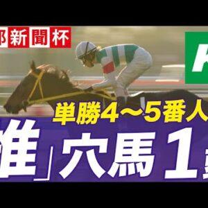 京都新聞杯 2021 【予想】かしわ記念的中の勢いに乗って!「☆あの馬」で勝負