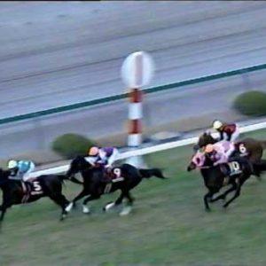 1995 阪神牝馬特別 サマニベッピン