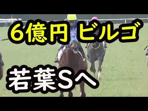 アドマイヤビルゴは武豊騎手で若葉Sへ【競馬のお話ch】