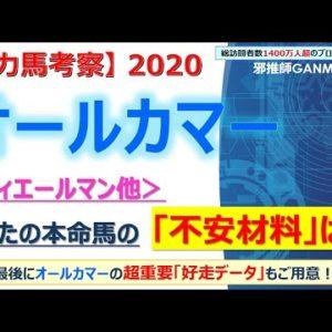 【オールカマー2020 有力馬考察】フィエールマン他 人気馬5頭を徹底考察!