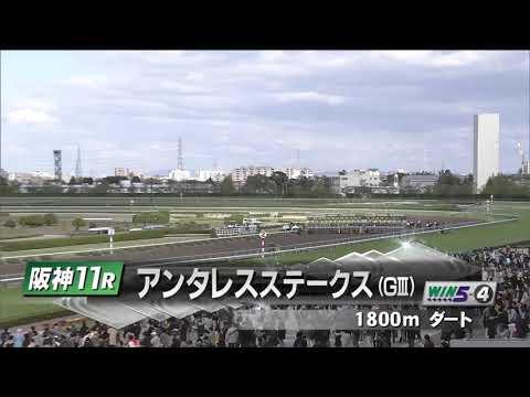 2018/4/15 阪神11R 第23回 アンタレスS(GⅢ)【グレイトパール】