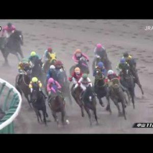2020/03/31 第27回 マーチS(GⅢ)【スワーヴアラミス】
