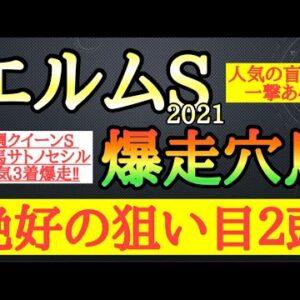 【エルムステークス2021】爆走穴馬考察!人気の盲点になっていて今回の舞台で一発ある2頭を公開!競馬予想TV【☆te-chan☆】