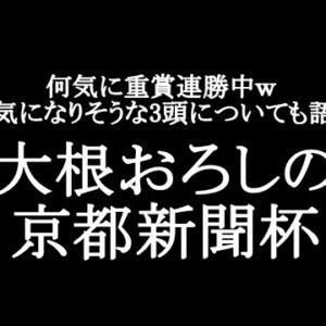 【競馬予想】京都新聞杯2021【大根おろし】